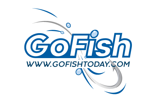 Go Fish Today